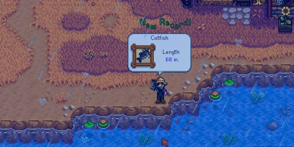 How to catch catfish in Stardew Valley